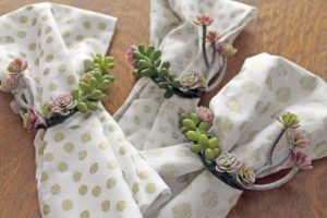 succulent napkin rings | polka dots and picket fences