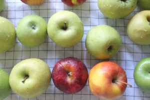 criss, cross…crockpot applesauce