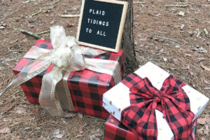 plaid tidings to all…christmas cards